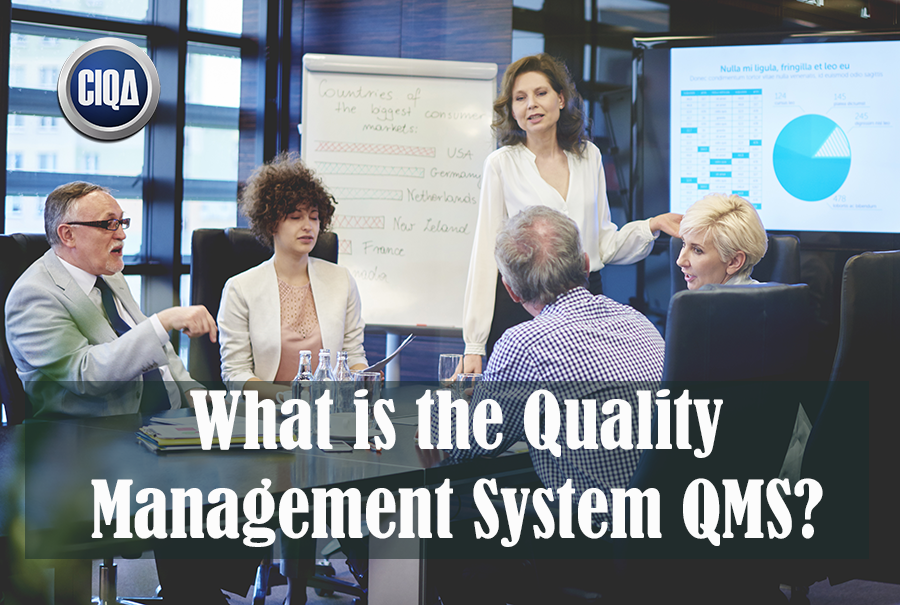 What is Quality Management System (QMS)?
