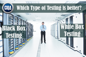 Which type of testing is better