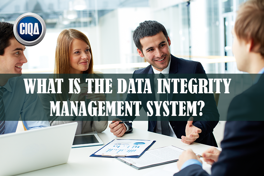 All You Need to Know About Data Integrity Management System.