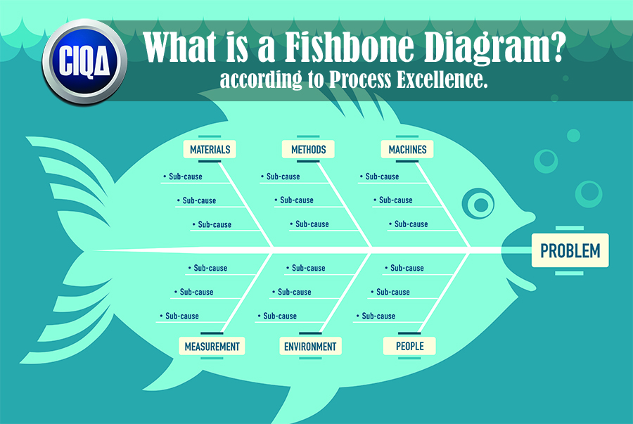 Understanding What is a Fishbone Diagram as a Tool for Troubleshooting.