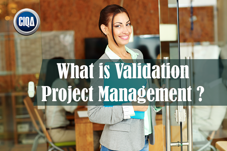All You Need to Know About Validation Project Management in 7 Steps.